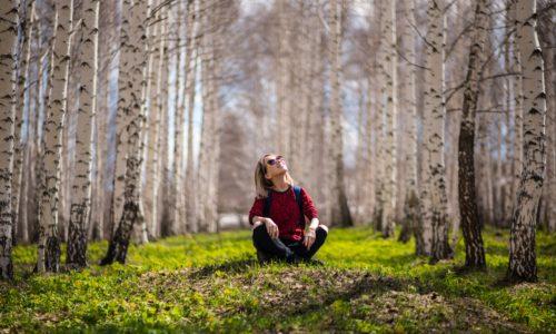 blur-branch-countryside-394545